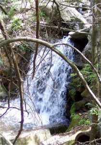 14 Waterfall L