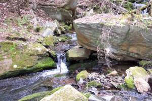 16 Waterfall L